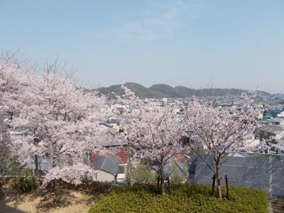 のじぎく3階から風景.jpg