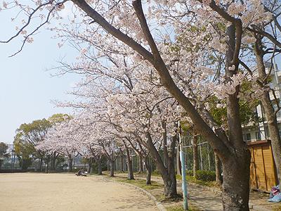 伊川谷病院07-2.jpg